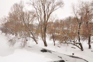 iarna10.jpg