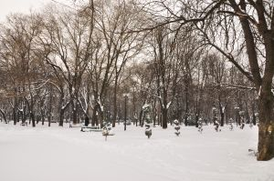 iarna17.jpg